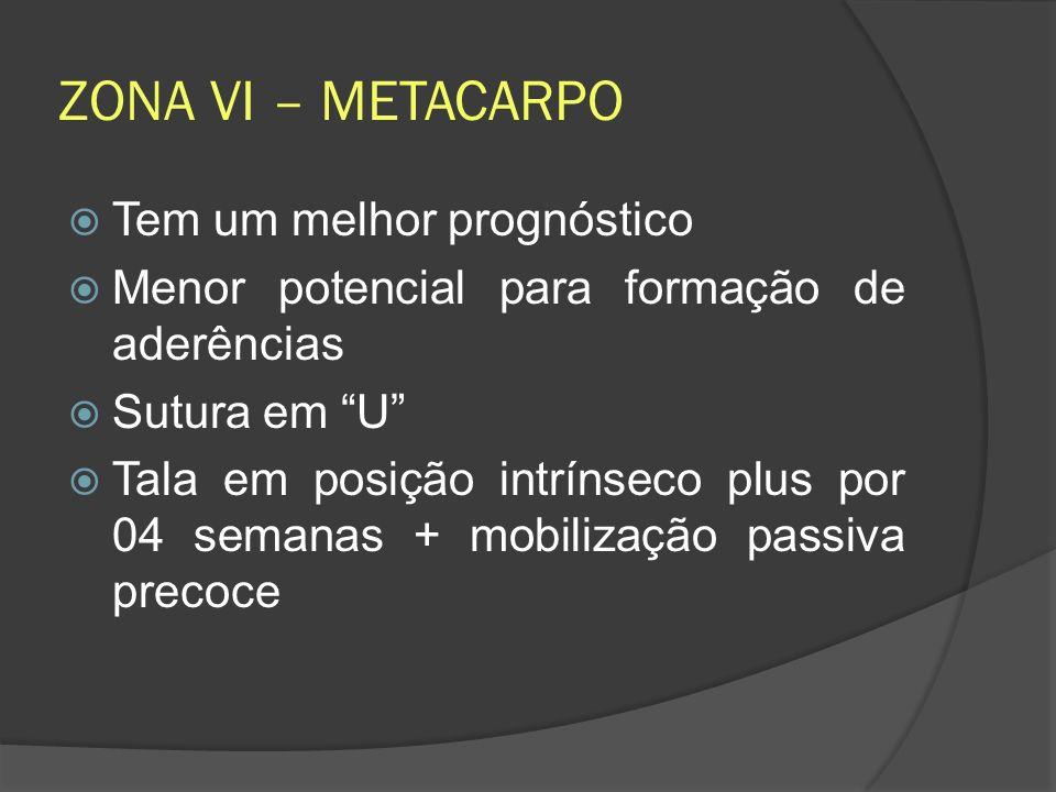 ZONA VI – METACARPO Tem um melhor prognóstico