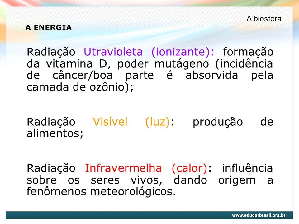 Radiação Visível (luz): produção de alimentos;