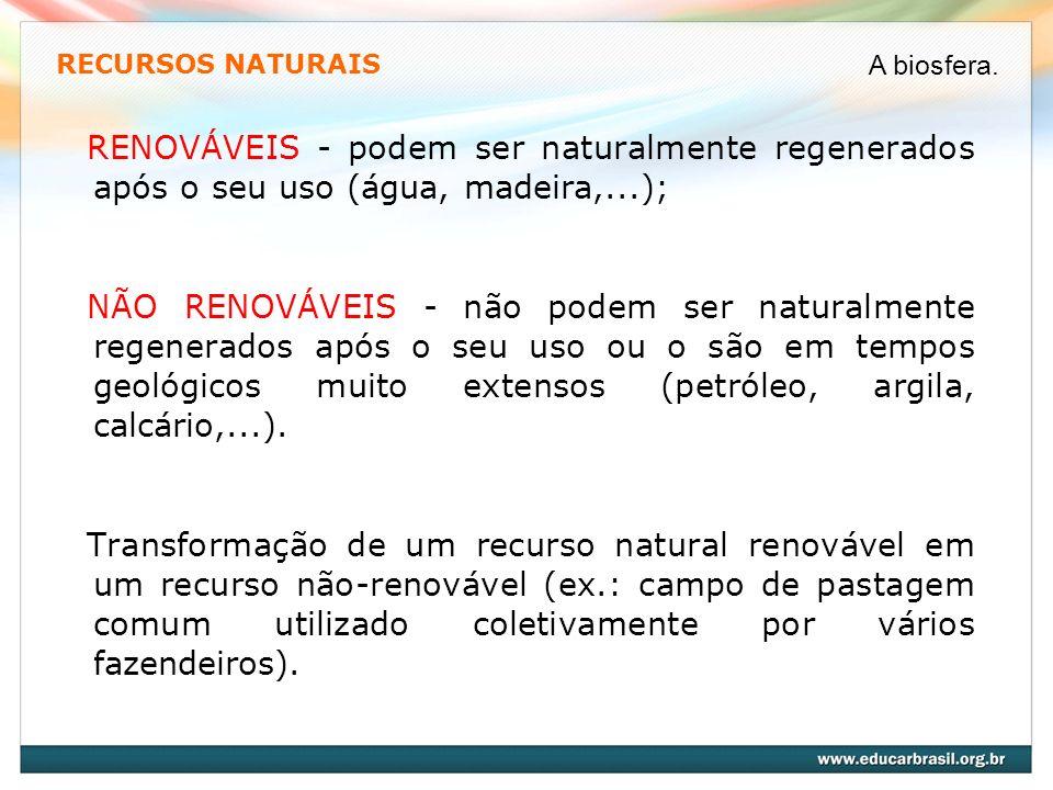 RECURSOS NATURAIS A biosfera. RENOVÁVEIS - podem ser naturalmente regenerados após o seu uso (água, madeira,...);