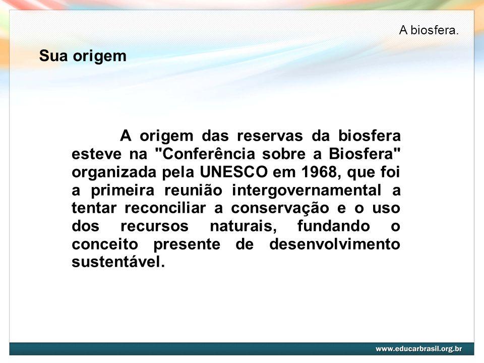 A biosfera. Sua origem.