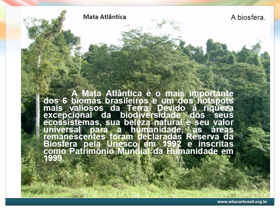 Mata Atlântica A biosfera.