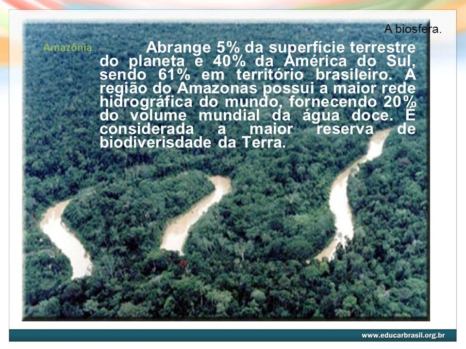 A biosfera. Amazônia.