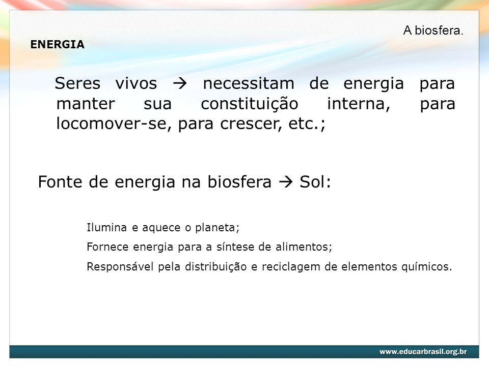 Fonte de energia na biosfera  Sol: