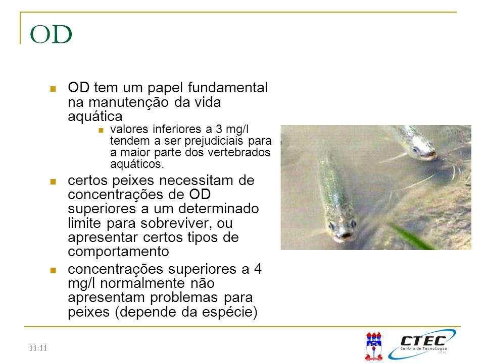 OD OD tem um papel fundamental na manutenção da vida aquática