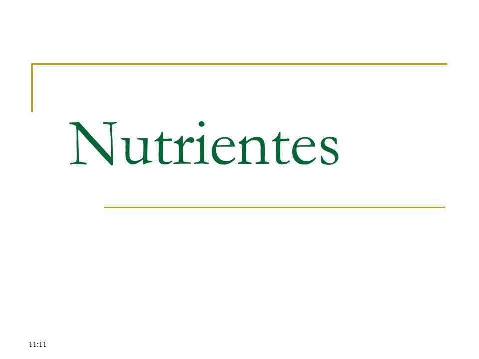 Nutrientes 11:11