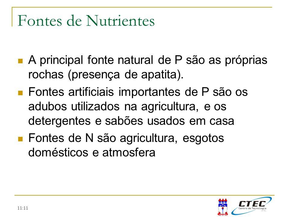 Fontes de Nutrientes A principal fonte natural de P são as próprias rochas (presença de apatita).