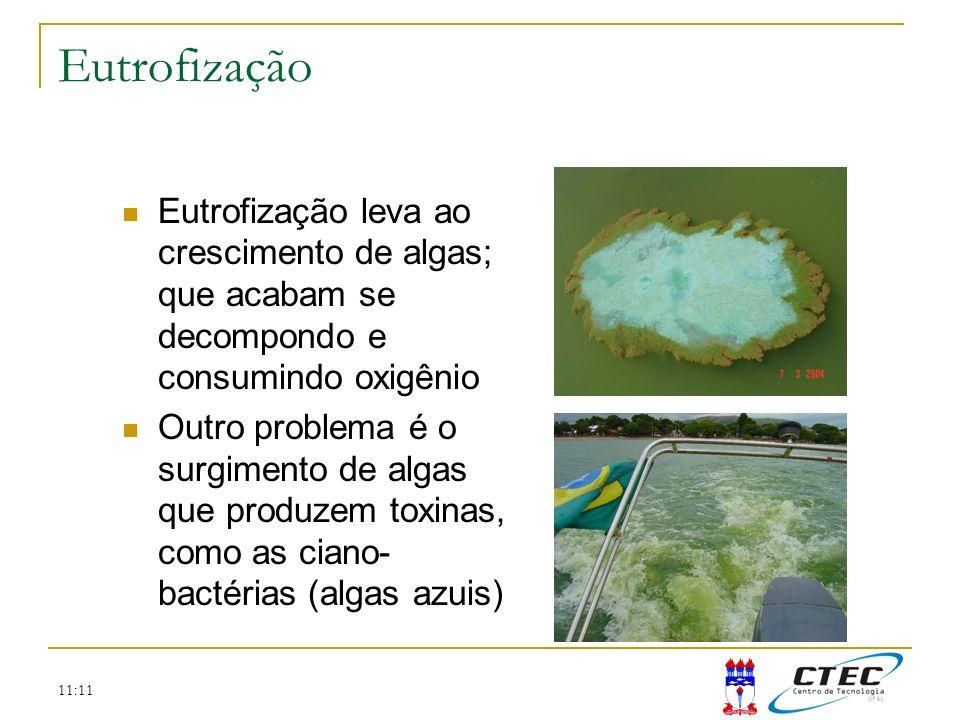 Eutrofização Eutrofização leva ao crescimento de algas; que acabam se decompondo e consumindo oxigênio.