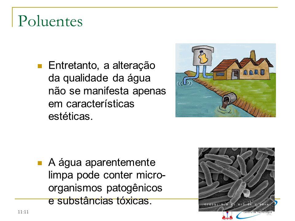 Poluentes Entretanto, a alteração da qualidade da água não se manifesta apenas em características estéticas.