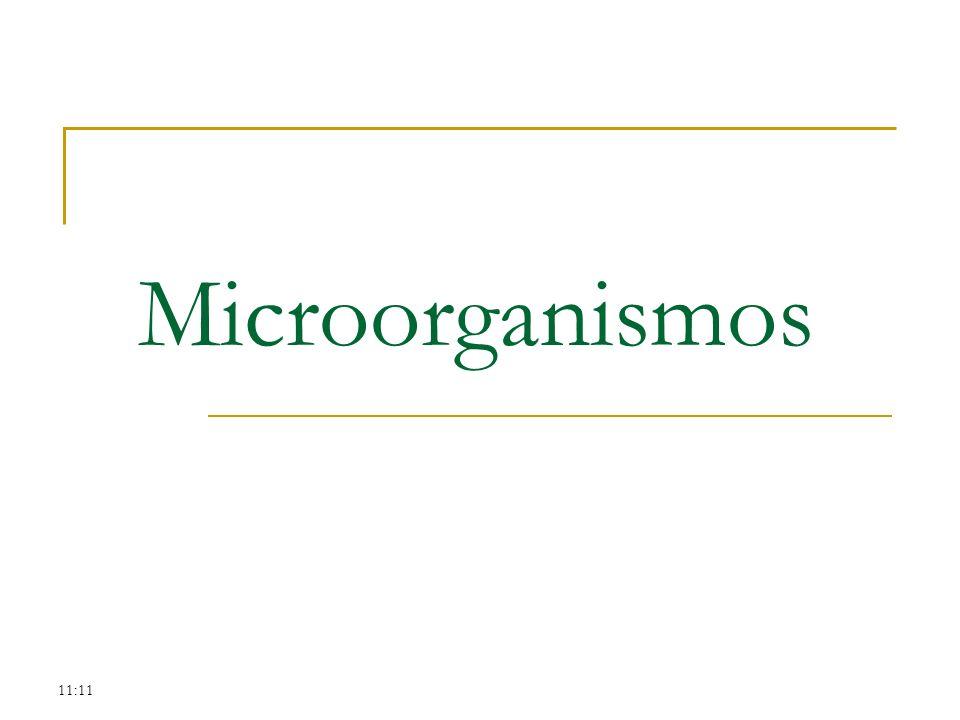 Microorganismos 11:11