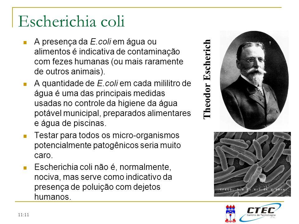 Escherichia coli Theodor Escherich