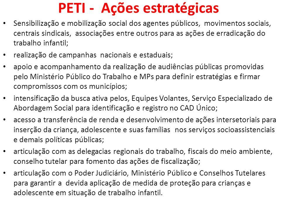 PETI - Ações estratégicas
