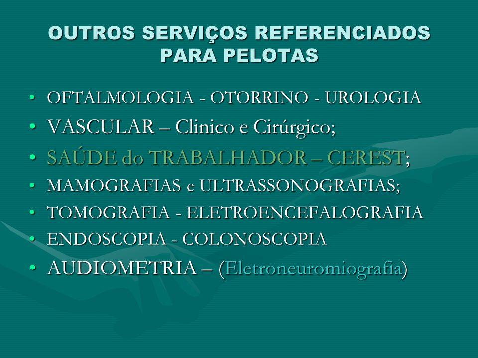 OUTROS SERVIÇOS REFERENCIADOS PARA PELOTAS
