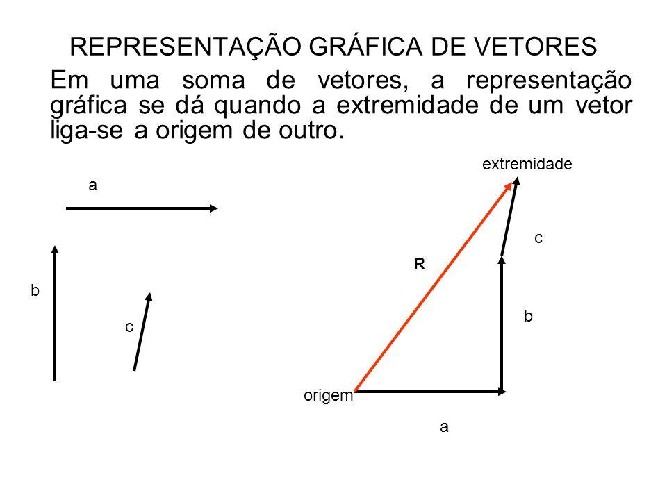 REPRESENTAÇÃO GRÁFICA DE VETORES