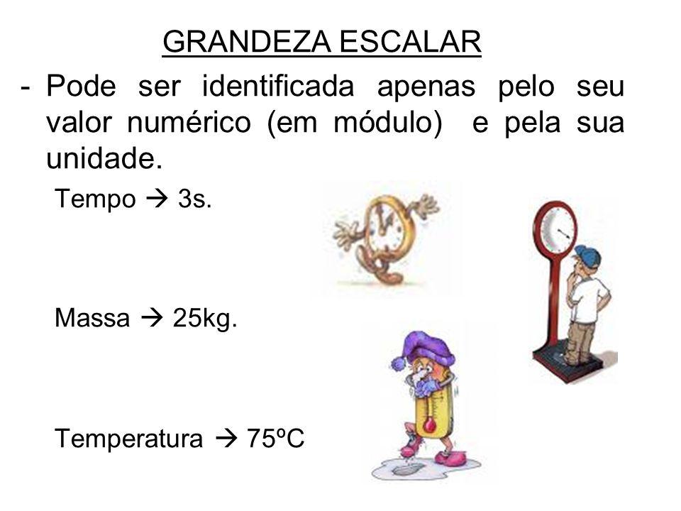 GRANDEZA ESCALAR Pode ser identificada apenas pelo seu valor numérico (em módulo) e pela sua unidade.