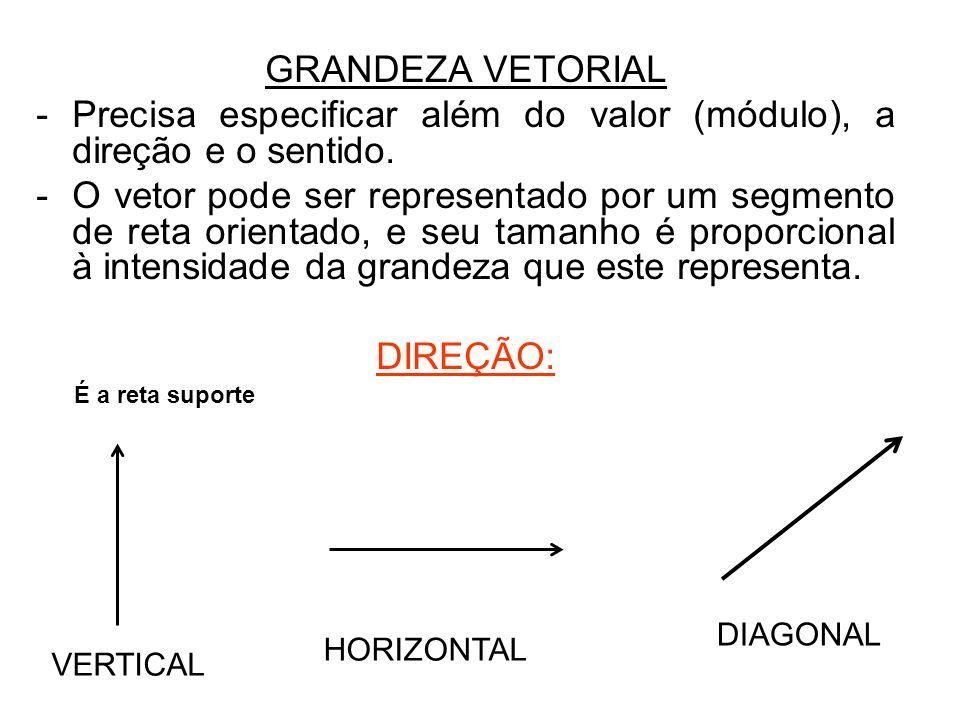 Precisa especificar além do valor (módulo), a direção e o sentido.