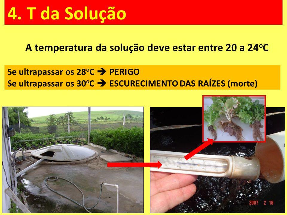 A temperatura da solução deve estar entre 20 a 24oC