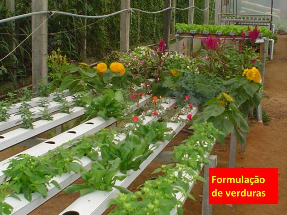 Formulação de verduras