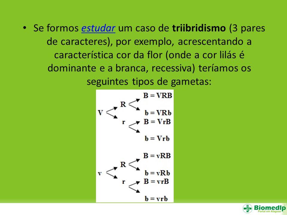 Se formos estudar um caso de triibridismo (3 pares de caracteres), por exemplo, acrescentando a característica cor da flor (onde a cor lilás é dominante e a branca, recessiva) teríamos os seguintes tipos de gametas: