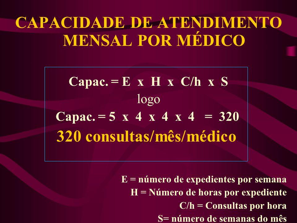 CAPACIDADE DE ATENDIMENTO MENSAL POR MÉDICO