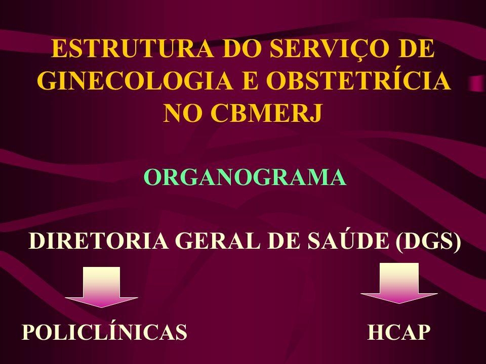 ESTRUTURA DO SERVIÇO DE GINECOLOGIA E OBSTETRÍCIA NO CBMERJ