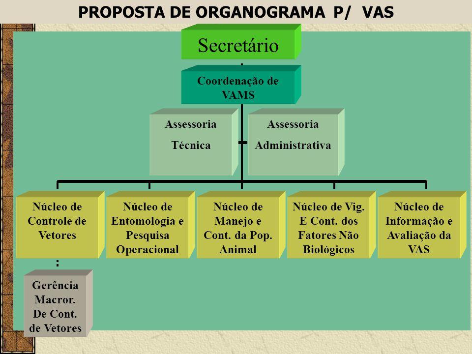 Secretário PROPOSTA DE ORGANOGRAMA P/ VAS Coordenação de VAMS