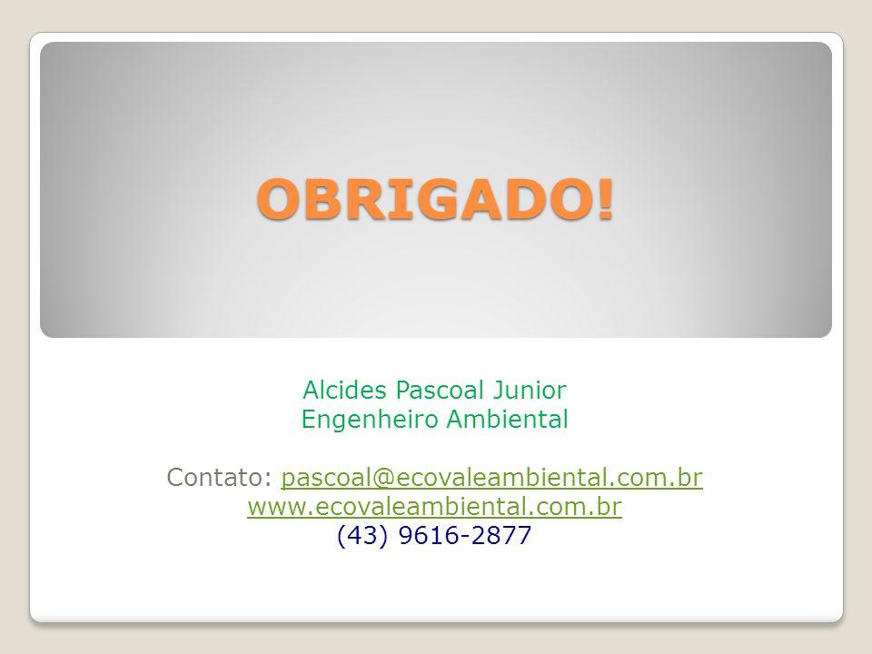 OBRIGADO! Alcides Pascoal Junior Engenheiro Ambiental