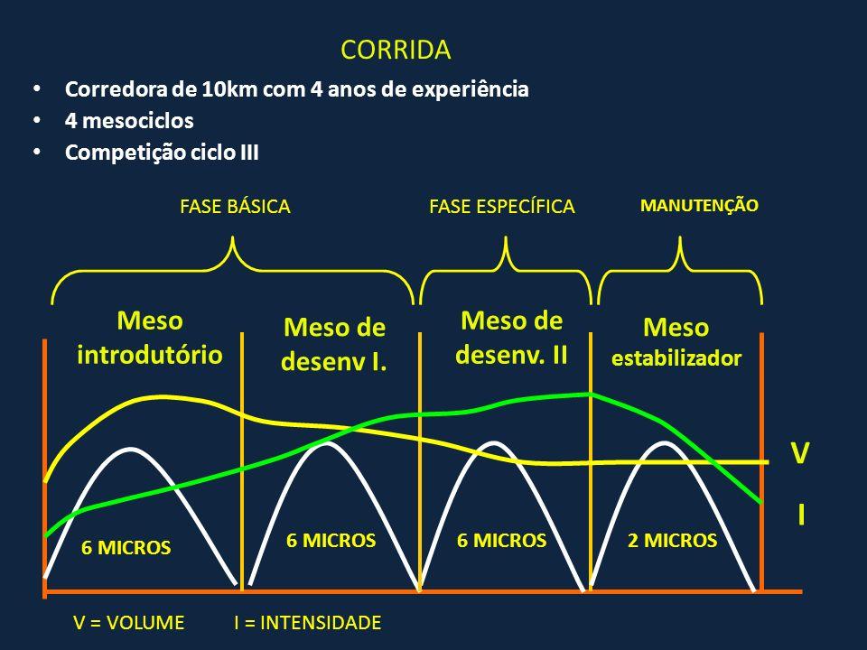 V I CORRIDA Meso introdutório Meso de desenv. II Meso de desenv I.