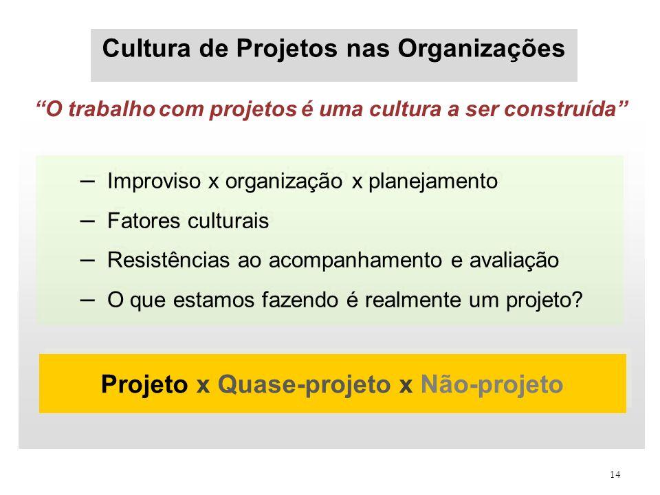 Cultura de Projetos nas Organizações