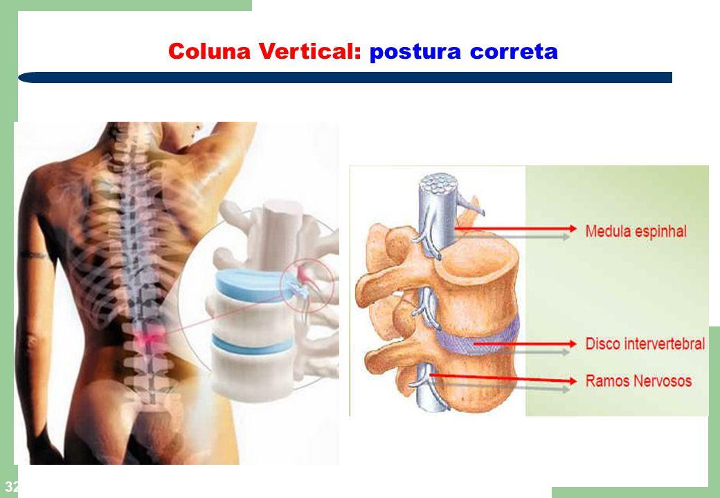 Coluna Vertical: postura correta