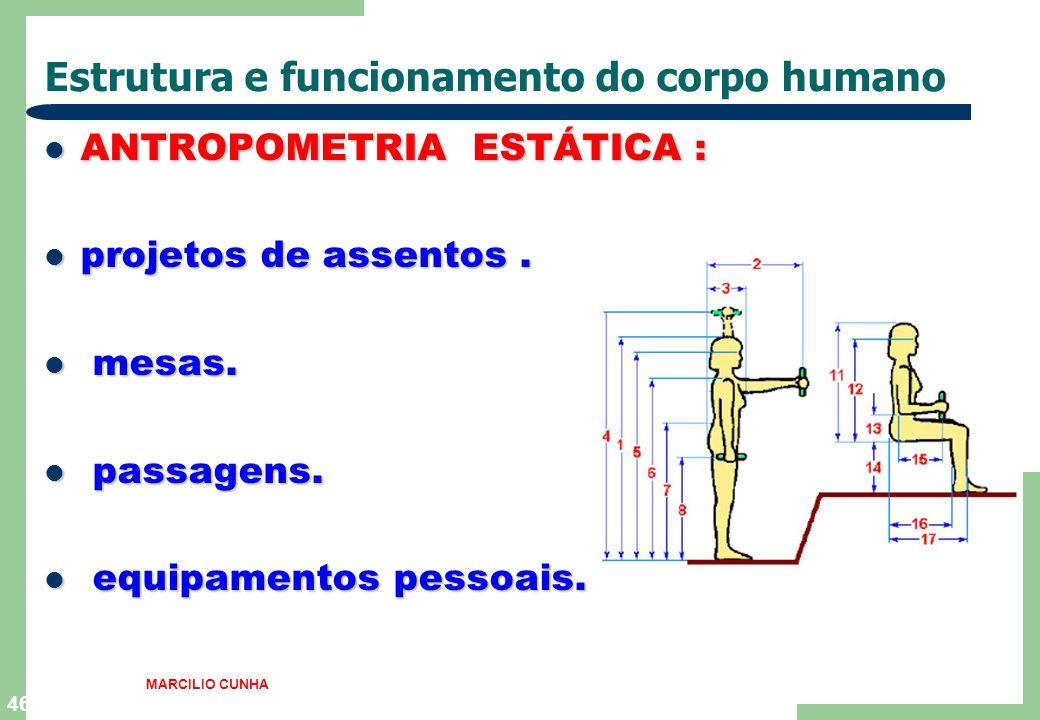 Estrutura e funcionamento do corpo humano