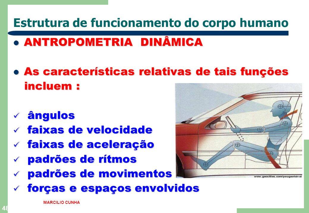 Estrutura de funcionamento do corpo humano