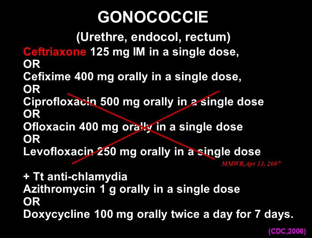 (Urethre, endocol, rectum)