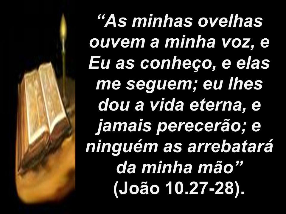 As minhas ovelhas ouvem a minha voz, e Eu as conheço, e elas me seguem; eu lhes dou a vida eterna, e jamais perecerão; e ninguém as arrebatará da minha mão
