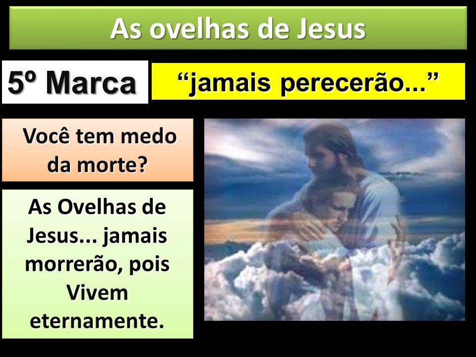 As Ovelhas de Jesus... jamais morrerão, pois Vivem eternamente.
