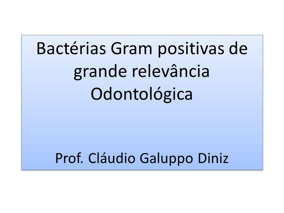 Bactérias Gram positivas de grande relevância Odontológica