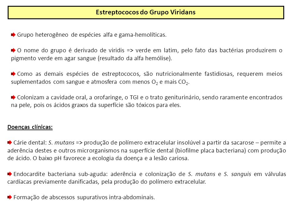 Estreptococos do Grupo Viridans