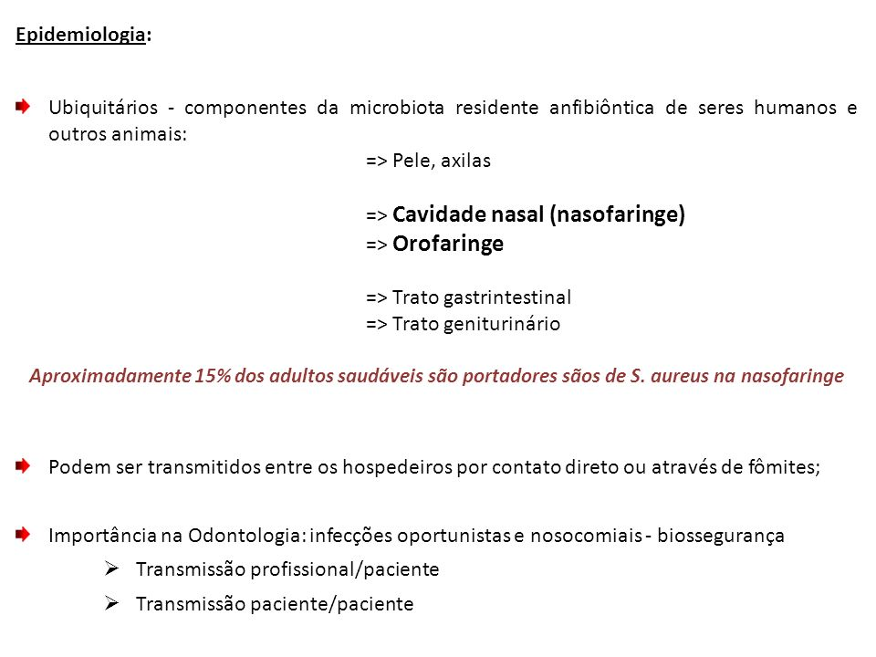 => Cavidade nasal (nasofaringe) => Orofaringe