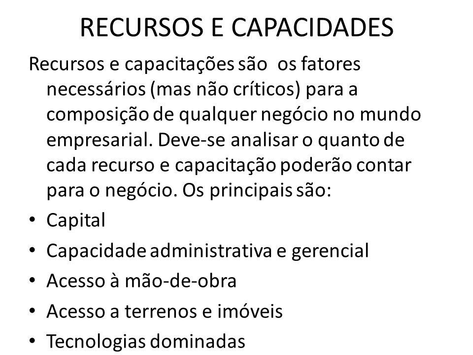 RECURSOS E CAPACIDADES