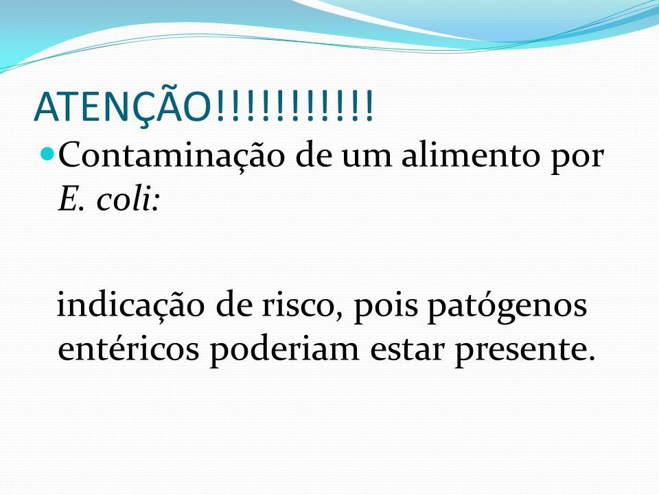 ATENÇÃO!!!!!!!!!!! Contaminação de um alimento por E. coli: