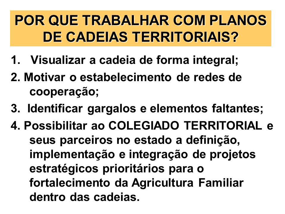 POR QUE TRABALHAR COM PLANOS DE CADEIAS TERRITORIAIS