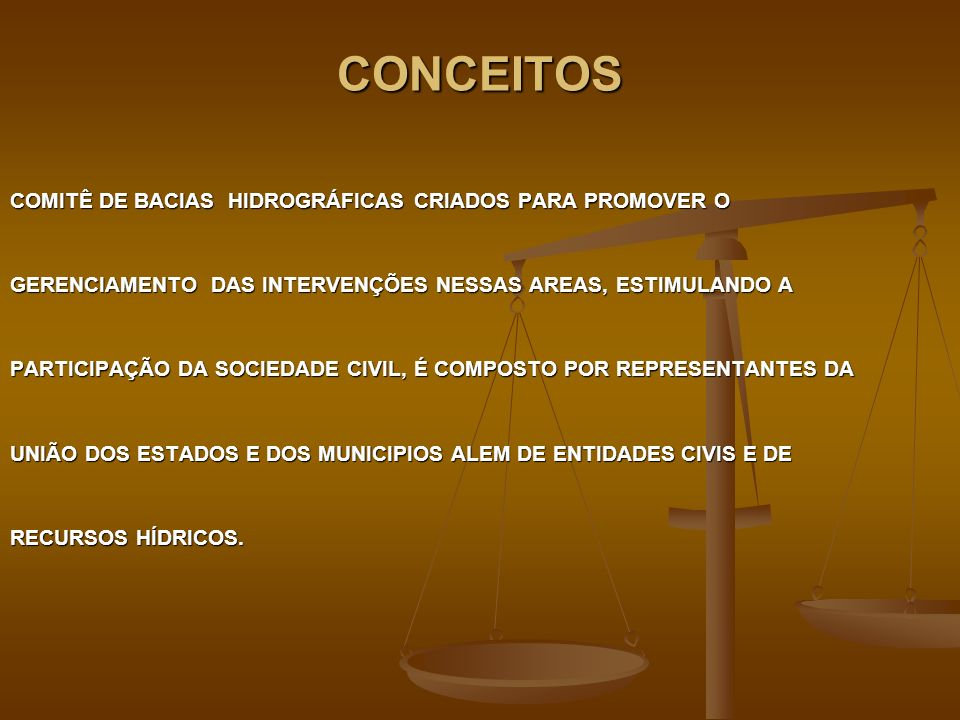 CONCEITOS COMITÊ DE BACIAS HIDROGRÁFICAS CRIADOS PARA PROMOVER O