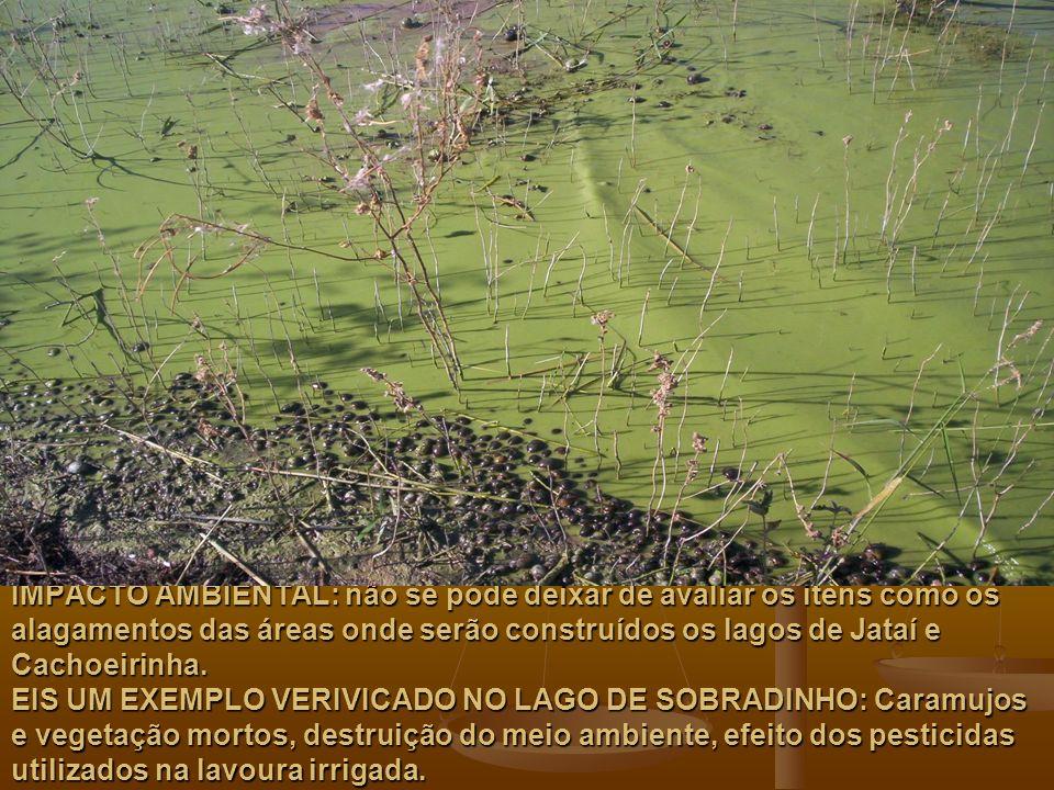 IMPACTO AMBIENTAL: não se pode deixar de avaliar os itens como os alagamentos das áreas onde serão construídos os lagos de Jataí e Cachoeirinha.