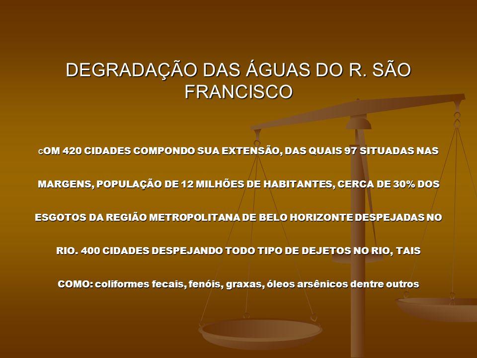 DEGRADAÇÃO DAS ÁGUAS DO R