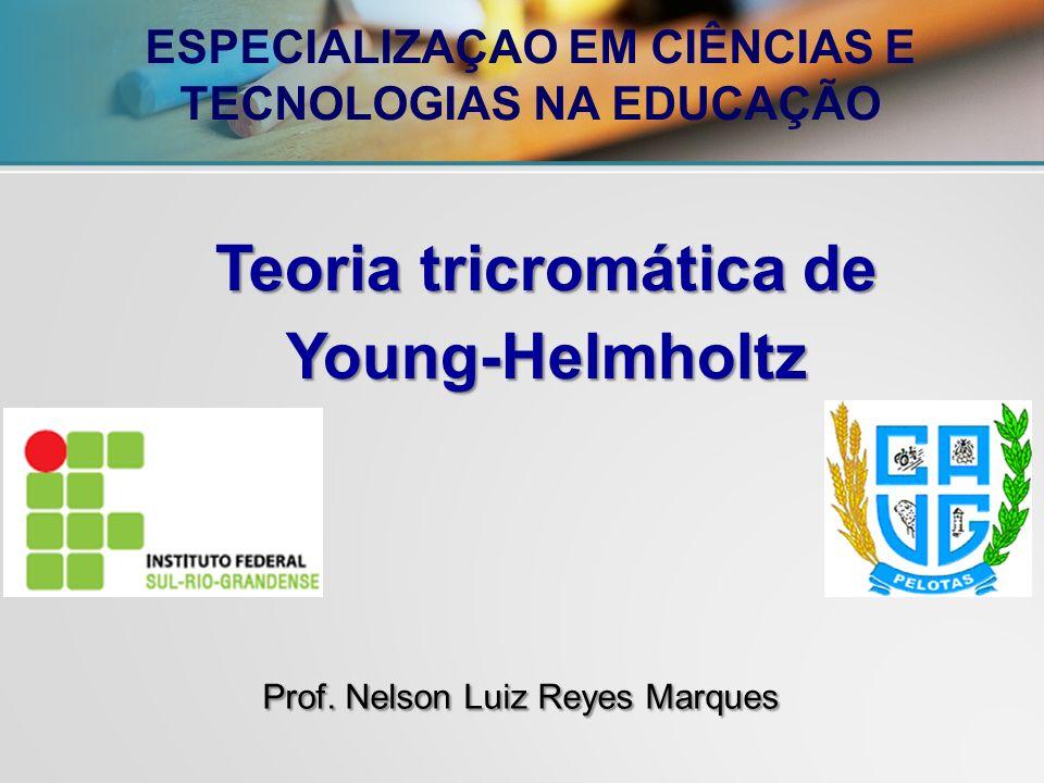 Prof. Nelson Luiz Reyes Marques
