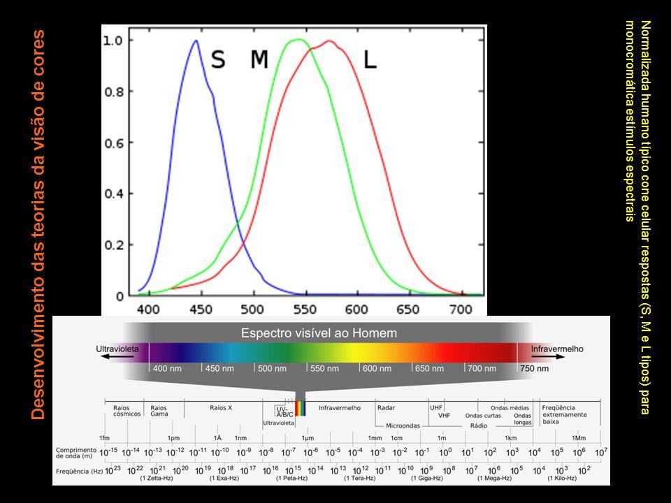 Desenvolvimento das teorias da visão de cores