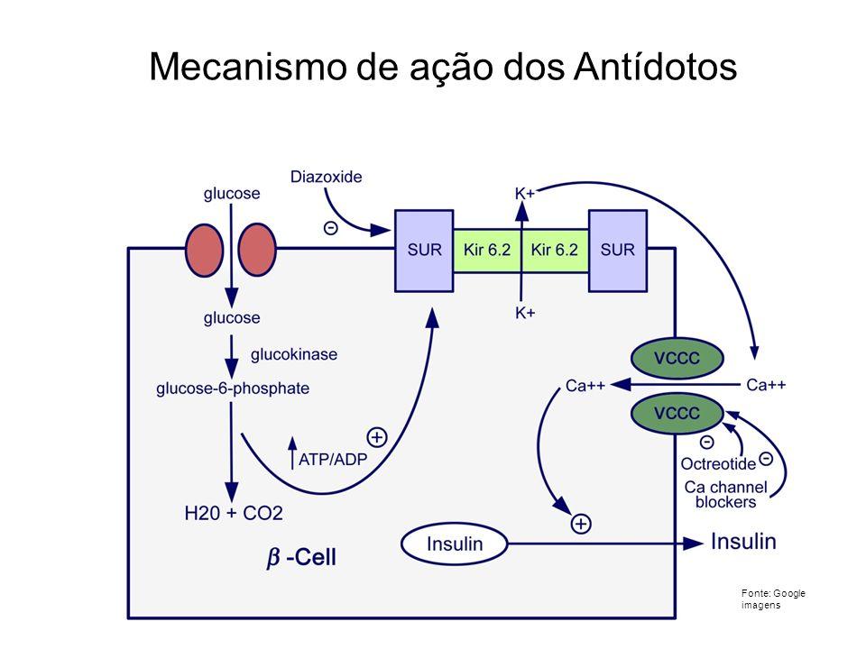 Mecanismo de ação dos Antídotos