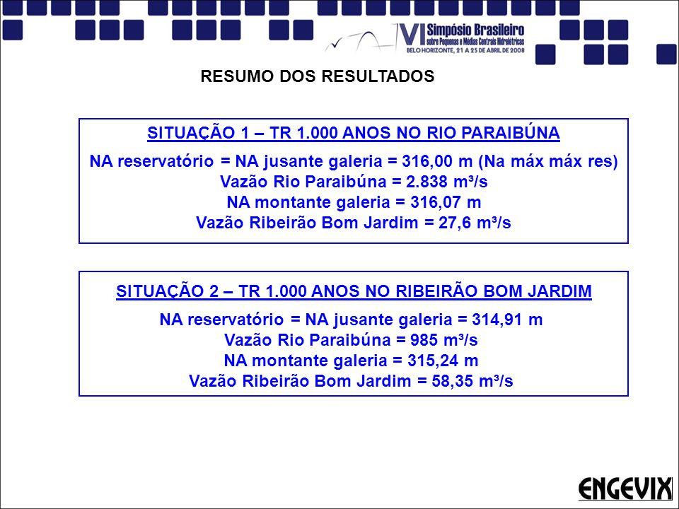 SITUAÇÃO 1 – TR 1.000 ANOS NO RIO PARAIBÚNA