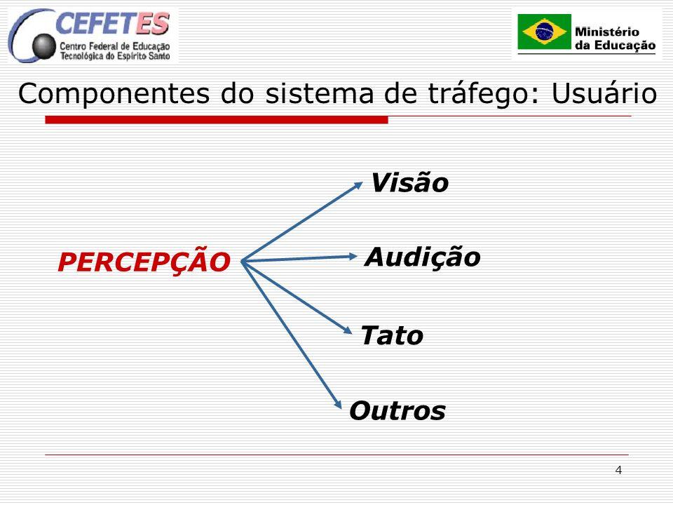 Componentes do sistema de tráfego: Usuário