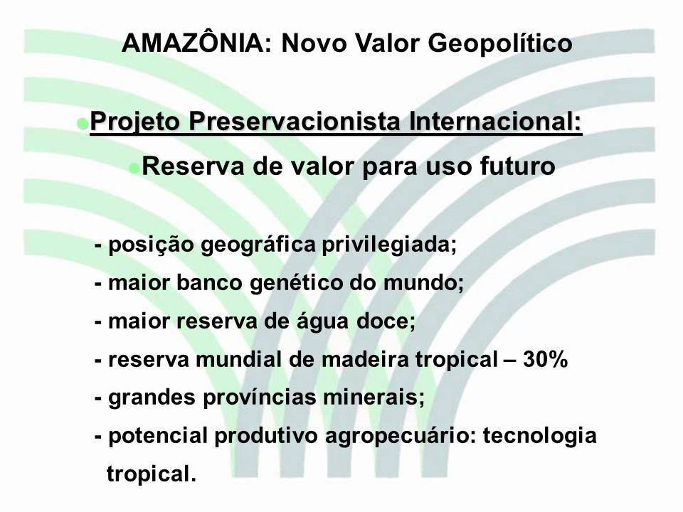 AMAZÔNIA: Novo Valor Geopolítico Reserva de valor para uso futuro