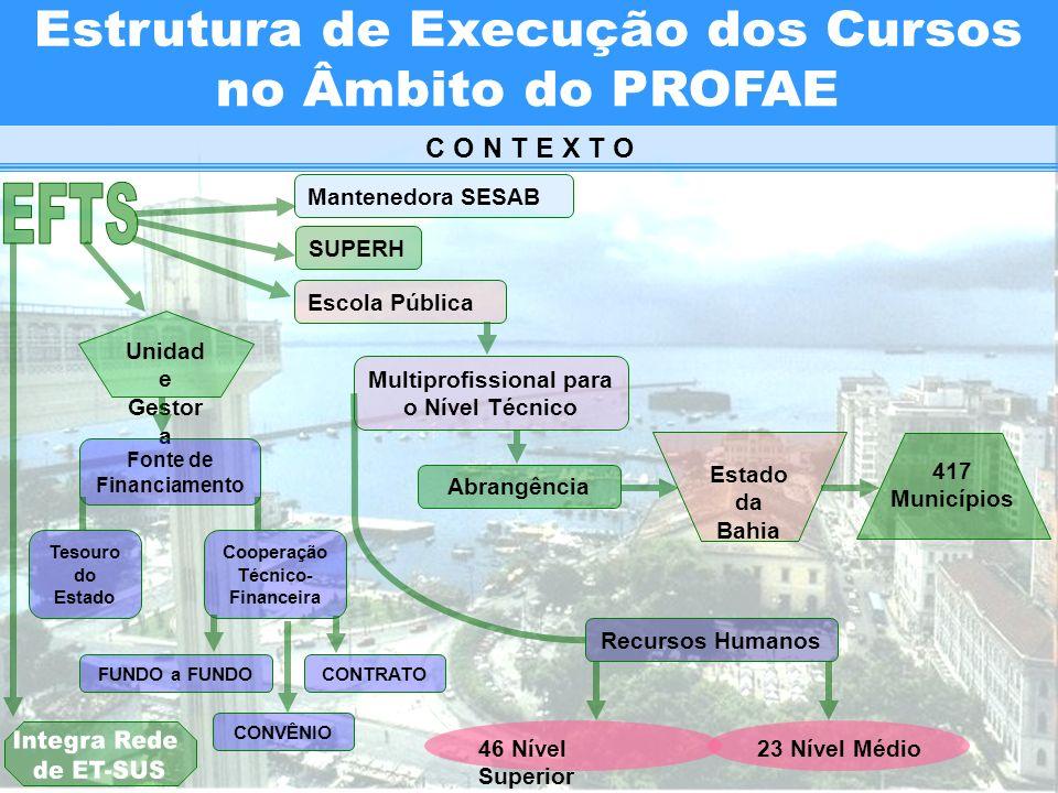 Estrutura de Execução dos Cursos no Âmbito do PROFAE
